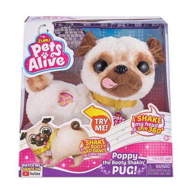 Pets Alive 跳舞巴哥犬