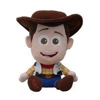 Toy Story反斗奇兵 大頭胡迪