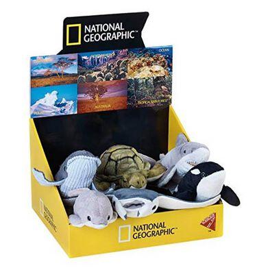 National Geographic國家地理頻道 - 海洋小動物 - 隨機發貨