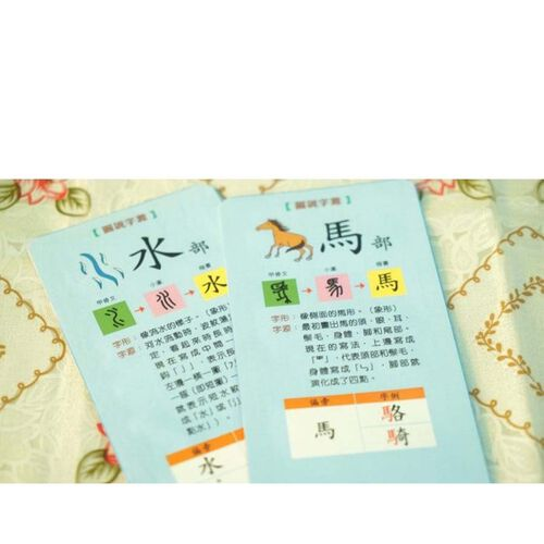 Sun Ya Publications新雅文化 蒙特梭利漢字部首拼圖卡