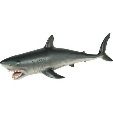 Animal Zone動物叢林 珍寶鯊魚
