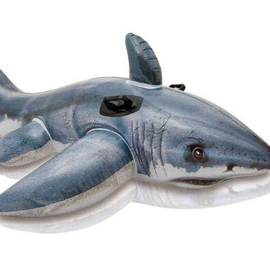 Intex 大白鯊浮座