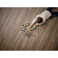 LEGO樂高哈利波特系列 霍格華玆: 消失的密室 76389