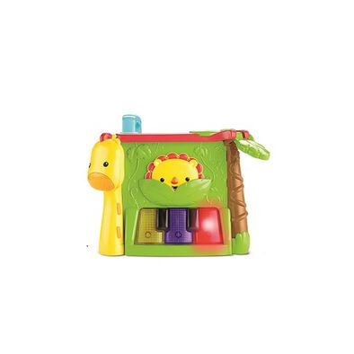 Fisher-Price Play & Learn Activity Cube