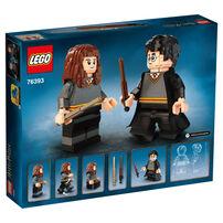 LEGO樂高哈利波特系列 哈利波特和妙麗·格蘭傑 76393