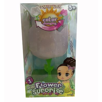 Mini Flower Surprise驚奇花 迷你驚奇花 - 隨機發貨