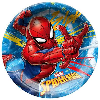 Spider-Man蜘蛛俠 紙碟